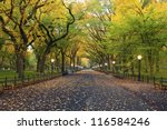 Central Park. Image Of  The...