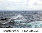 storm waves in the world ocean. ... | Shutterstock . vector #1165936963