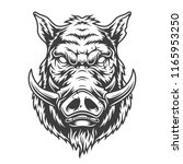 boar head in black and white... | Shutterstock .eps vector #1165953250