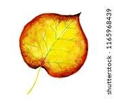 beautiful watercolor autumn... | Shutterstock . vector #1165968439
