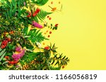 wild healing herbs on bright... | Shutterstock . vector #1166056819