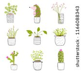 flowers in pots hand drawn. set ... | Shutterstock .eps vector #1166088343