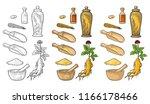 set panax ginseng. root  slice  ... | Shutterstock .eps vector #1166178466