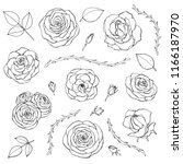 vector hand drawn set of rose... | Shutterstock .eps vector #1166187970