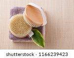 brush for dry body massage  ... | Shutterstock . vector #1166239423