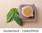 brush for dry body massage  ... | Shutterstock . vector #1166239426