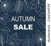 vector illustration of autumn... | Shutterstock .eps vector #1166264539