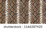 piton skin  snake pattern ... | Shutterstock . vector #1166287420