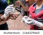 """Veterinary inject vaccine to chicken for prevent Poultry Diseases . Avian influenza is highly pathogenic avian influenza (HPAI). """"Bird flu"""" is a similar to """"swine ,"""" """"dog ,"""" """"horse ,"""" or """"human flu"""" ."""