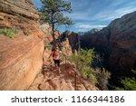 zion national park  utah usa 6... | Shutterstock . vector #1166344186