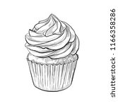 hand drawn cupcake sketch ... | Shutterstock .eps vector #1166358286