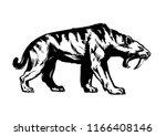 saber toothed tiger. smilodon....   Shutterstock .eps vector #1166408146
