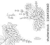 floral garland of hydrangea.... | Shutterstock .eps vector #1166410660