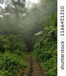 haflong hill  dima hasao  assam ... | Shutterstock . vector #1166451310
