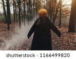 a terrible creature in the...   Shutterstock . vector #1166499820
