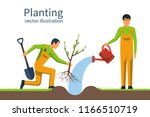 planting tree. gardener with... | Shutterstock .eps vector #1166510719