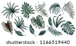 tropical vintage palm leaves... | Shutterstock .eps vector #1166519440
