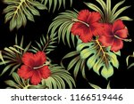 tropical vintage red hibiscus... | Shutterstock .eps vector #1166519446