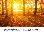 autumn landscape with trees in ... | Shutterstock . vector #1166546950