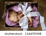 Little Cute Baby In The Box...