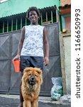 duque de caxias  rio de janeiro ...   Shutterstock . vector #1166650993
