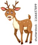 a cute deer on white background ...   Shutterstock .eps vector #1166657899
