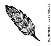beautiful hand drawn feather | Shutterstock . vector #1166758786