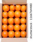 top view of orange fruit citrus ... | Shutterstock . vector #1166764480