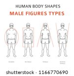 human body shapes. male figures ... | Shutterstock .eps vector #1166770690