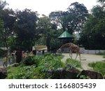 kuala lumpur  malaysia  august... | Shutterstock . vector #1166805439