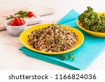 rice with meat | Shutterstock . vector #1166824036