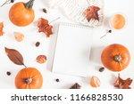autumn composition. pumpkins ... | Shutterstock . vector #1166828530