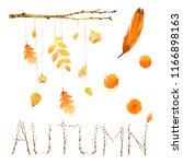 watercolor autumn nature... | Shutterstock . vector #1166898163