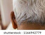 white hair elderly man.   Shutterstock . vector #1166942779