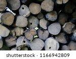 firewood for the winter  stacks ... | Shutterstock . vector #1166942809
