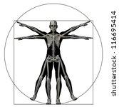high resolution vitruvian human ...   Shutterstock . vector #116695414