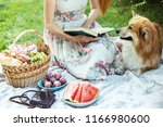 summer   picnic in the meadow.  ... | Shutterstock . vector #1166980600