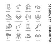 set of 16 simple line icons...   Shutterstock .eps vector #1167089350