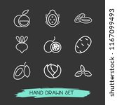 set of fruit icons line style... | Shutterstock .eps vector #1167099493