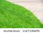 urban photography  a lawn is an ... | Shutterstock . vector #1167130690