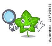 detective green ivy leaf on... | Shutterstock .eps vector #1167145696