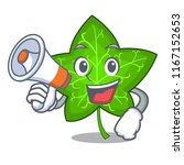 with megaphone ivy leaf... | Shutterstock .eps vector #1167152653