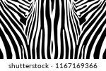 Zebra Pattern Balanced