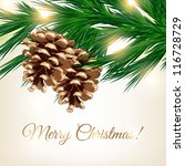 Fir Tree  Light Christmas...