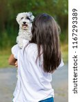 Stock photo beautiful smiling woman hugging her cute havanese dog pet and owner outdoor 1167293389