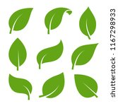 eco green color leaf vector... | Shutterstock .eps vector #1167298933