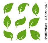 eco green color leaf vector... | Shutterstock .eps vector #1167298939