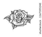 dotwork rose flower. vector... | Shutterstock .eps vector #1167355240
