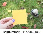 back to school. yellow piece of ... | Shutterstock . vector #1167363103