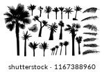 a set of palm trees and palm... | Shutterstock .eps vector #1167388960